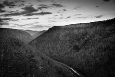 PA Grand Canyon (talkingtojoey) Tags: blackandwhite pennsylvaniagrandcanyon pagrandcanyon