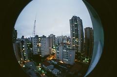 #330 ([ iany trisuzzi ]) Tags: brazil film brasil analog 35mm analógica saopaulo fisheye sp day330 fisheye2 project365 365days