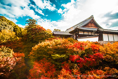 Tofukuji Temple Kyoto, Japan (dgbs86) Tags: blue red sky orange cloud color colour building green leaves japan clouds canon temple eos leaf maple kyoto colorful tofukuji  5d osaka m3 coloured 1635mm colorimage  f28l kyotoprefecture earthasia 5dmarkiii canoneos1635mmf28l