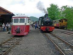 """Autorail Billad 213 et locomotive Corpet-Louvet 24 à Lamastre • <a style=""""font-size:0.8em;"""" href=""""http://www.flickr.com/photos/86960250@N02/8258453589/"""" target=""""_blank"""">View on Flickr</a>"""