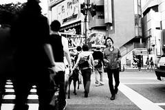 (pablo_martin) Tags: meijijingumae tokio tokyo omotesando harajuku japan japanese bw blurry traffic pedestrian crossing against candid leica m9 japanisch japaner rangefinder 2012 travel japon japonais japones nippon asien asie asia asian
