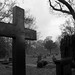Friedhof Riensberg
