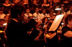 (Paul_Castro) Tags: teatro concert theater theatre concierto concerto violin orchestra strings chords teatre cordes orchestre orquestra corde violino orquesta violon acordes violinista cuerdas carminaburana accordi violi acords orquestasinfónicasinaloadelasartes