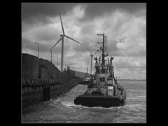 IMG_3438 Svitzer Bidston and Millgarth (mikemcfallphotography) Tags: svitzer svitermillgarth svitzerbidston merseyside mersey rivermersey liverpool liverpooldocks liverpoolwaterfront blackandwhite