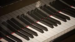 Waiting to make sweet music (Nick Fewings 4.5 Million Views) Tags: nickfewings notes keyboard white black ivory ebony reflection keys piano music 2016
