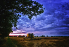 Done for the Day (miniwaites) Tags: cloud clouds nex sky a6000 colorefex combine combineharvester evening farm field harvest harvester nik niksuite sony suffolk sunset tree trees tunstall england unitedkingdom gb