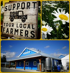Support local farmers. (France-) Tags: mots winery fleur collage langley bc daisy message difice building