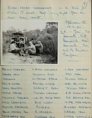 n88_w1150 (BioDivLibrary) Tags: 19191982 australia browngrahama browngrahama19191982 diaries ornithologists travel museumvictoria bhl:page=48115651 dc:identifier=httpbiodiversitylibraryorgpage48115651 grahambrown fielddiary geo:country=australia