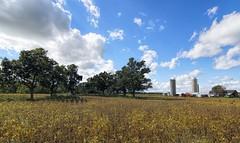 Rural Wisconsin 556 (MalaneyStuff) Tags: atx 116 pro dx atx116prodx tokina nikon wisconsin usa d5100 farm farmland clouds barn tokinaaf1116mmf28