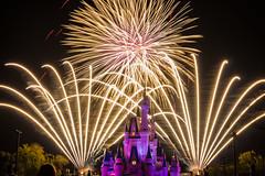 Wishes Finale (Jared Beaney) Tags: disney disneythemeparks themeparks magickingdom waltdisneyworld nightphotography wishes disneyfireworks magickingdomfireworks