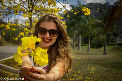 IMG_7097 (ArgeoneHerbst) Tags: modelo model ensaio ensaiofotografico namorada mulherbonita mulher ip ipamarelo flores amarelo canont5 canon photography