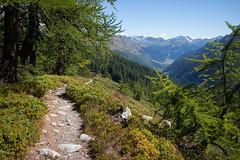 Val Bedretto . Ticino (Toni_V) Tags: m2401255 rangefinder digitalrangefinder messsucher leica leicam mp typ240 type240 35lux 35mmf14asph 35mmf14asphfle summiluxm hiking wanderung randonne escursione ticino tessin valbedretto alps alpen sentiero trail wanderweg switzerland schweiz suisse svizzera svizra europe nufenenairolo toniv 2016 160906