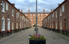 Quaint street in Manchester (Tony Worrall) Tags: gmr manchester manc city northwest england northern uk update place location north visit area county attraction open stream tour country welovethenorth unitedkingdom street road terraced line homes houses paved entrance relic old ancoats