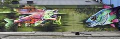Capelle a d IJssel  DOPIE & (Akbar Sim) Tags: capelleaandeijssel mientlive rewriters010 holland nederland netherlands graffiti streetart akbarsim akbarsimonse dopie