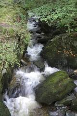 Stockghyll Force, Ambleside (davebarratt39) Tags: ambleside nationalpark waterfall england lakedistrict