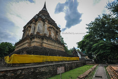 Chiang mai temple present by naturenote_E12403605-013 (10tis.com) Tags:
