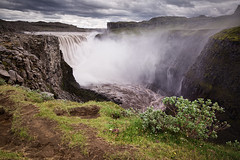 dettifoss (Dennis_F) Tags: park summer green nature water colors beautiful fog river landscape island iceland stream wasser europa europe sommer natur north norden national polar fluss landschaft isle dettifoss farben prometheus vulkan vulcanic vatnajkull islandic
