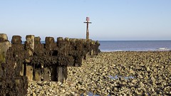 Low tide (Dave.27) Tags: sea sky seaweed beach weed tide norfolk bluesky groynes seadefence runton westrunton
