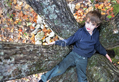 stuck (cara slifka) Tags: autumn trees boy mountain fall nature walking fun outside freshair climb woods child maine hike together recreation mothernature kidsandnature