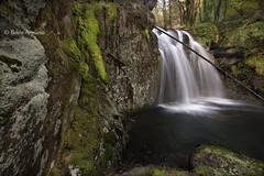 Untitled ... (.... belargcastel ....) Tags: espaa rio spain galicia cascada fervenza narn narahio belargcastel belnargeso fervenzadenarahio