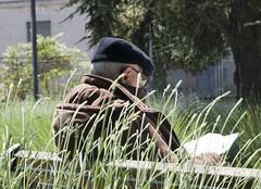 (Flavio Piffer) Tags: parco sun grass oldman erba basco sole vecchio anziano giornale vecchietto uomoanziano
