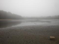 Weiher im Winter (simonereger) Tags: lake nature nebel natur landschaft weiher