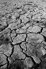 洛朗·洛索(Laurent Loizeau)在Flickr上进行的干旱