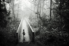 passerelle (sparth) Tags: november blackandwhite bw silhouette fog forest blackwhite washington woods noiretblanc sony daughter foggy washingtonstate brouillard bois zelie 2012 noirblanc sammamish rx100 sonyrx100