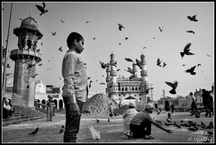 Pigeon feeding (ujjal dey) Tags: blackandwhite monochrome kid feeding pigeon dreams charminar ujjal meccamasjid nikond90 nikon18105mm ujjaldey ujjaldeyin figeonfeeding