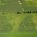 Corn Maze, Green Bay WI