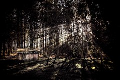 Haunted Cabin (joram68) Tags: wood red sun white black blur tree green slr forest canon project dark landscape eos lights cabin shine witch hell grain haunted creepy riding sphere 7d shutter blair hood haunting usm vignette shining forests creep lightroom joram 1585 lensblr huyben