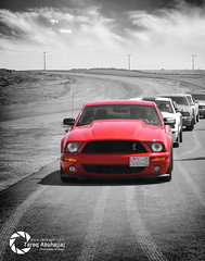 SHELBY THE LEADER (Tareq Abuhajjaj | Photography & Design) Tags: auto red moon white black cars car sport speed photography design photo high nice hp nikon flickr power desert top wheels engine fast style gear arab saudi arabia shelby leader re gt rims riyadh v8  supercharger 2010 supercharged ksa gt500 mustange tareq    d700 amereican tareqdesigncom tareqmoon tareqdesign  abuhajjaj  tareqphcom