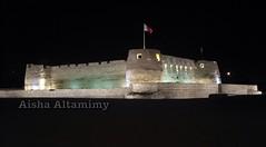 Arad Fort (Aisha Altamimy) Tags: sky art water colors night fun bahrain sand arts sandart البحرين pinkocean85 قلعةعرادaradfort