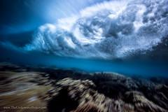 Sina (MarkTipple) Tags: ocean red coral photography surf underwater wave pacificocean reef tropics marktipple