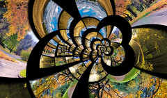 Infinity spiral from autumn photos (liseykina) Tags: park travel autumn orange abstract nature yellow collage set season landscape spiral day time russia mosaic background infinity surreal nobody collection clear frame future timeline imagination recursive concept moment shape infinite appointment global impossible escheresque droste lifetime