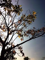 TOMORO 画像91