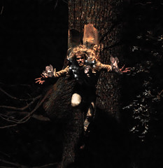 Hanging Around At Night - Reverse (berg81) Tags: tree gardens night vampire trelissick pentaxk7