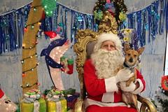 IMG_0087 (PMC Fresno) Tags: santa pet photos center medical spa pmc