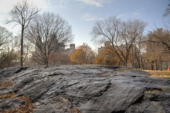 Schist ! (Jill Clardy) Tags: park new york city nyc autumn trees fall leaves rock volcano golden ancient day branches central clear era 100views granite trunks geology barren sedimentary exposed bedrock shale schist paleozoic geologic 9084 9085 9083