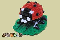 Animals: Ladybug (Joshua Christenson) Tags: leaf lego ladybug