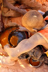 Mine d'or de Mankaraga (Xa.a) Tags: africa children gold mine or ngc westafrica burkina burkinafaso afrique afriquedelouest orpaillage goldprospector