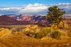 Morning (Explored 12/15) (doveoggi) Tags: arizona mountains landscape desert explore page 1240 bestcapturesaoi elitegalleryaoi dailynaturetnc12