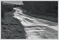 The road goes ever on and on (ShinyPhotoScotland) Tags: road street people blackandwhite cold art lines composite rural manipulated lens landscape photography scotland emotion decay curves transport gimp places equipment zen duotone roadside pentacon stark distance simple toned contrasts tranquil hdr stacked lightanddark existentialist windingroad dumfriesandgalloway leadinglines nearfar digikam newtonstewart tonemapped shapeandform rawconversion pentacon50mm enfuse calmstill luminancehdr darktable photivo abstractqualities mankindnature