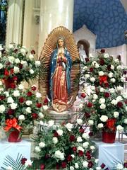 Gaudete Sunday (kelsokraft) Tags: advent catholic virginmary gaudetesunday