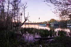 Rickmansworth Lakes at night (LiamCH) Tags: longexposure nightphotography nature water night pond natural dusk tripod lakes afterdark rickmansworth aquadrome bulbmode