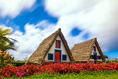 Traditional Thatched Cottages (NIOphoto.) Tags: madeira santana island house architecture cottage thatched longexposure clouds sky flower flowers nature portugal nikon tokina d5200 1120mm