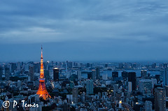Tokyo Tower Blue Hour I (Sol y Luz Photography (aka love_2_see_the_world)) Tags: skyline tokyo overcast citylights tokyotower bluehour cityskyline
