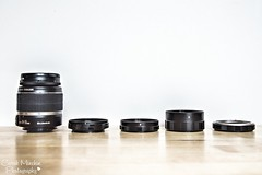 24th July - X is for... (sminchin1977) Tags: xisfor julyphotoadaychallenge fmsphotoaday atozofphotography extensiontubes