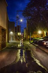 Alley Nile (Kansas Poetry (Patrick)) Tags: alley lawrencekansas lawrence kansas kansasuniversity universityofkansas massstreet patrickemerson summer patricklovesnancy