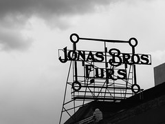 { Jonas' Bros Furs } (Web-Betty) Tags: fujineopan400 vscofilm bnw neon sign denver colorado type typography font letters vintage